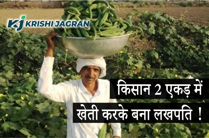 किसान ने 2 एकड़ में की सब्जियों की खेती, लाखों रुपए की हुई आमदनी !