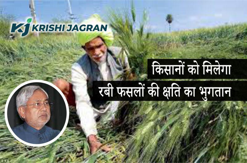 कृषि इनपुट अनुदान योजना के तहत जल्द मिलेगा रबी फसलों में हुई क्षति का भुगतान