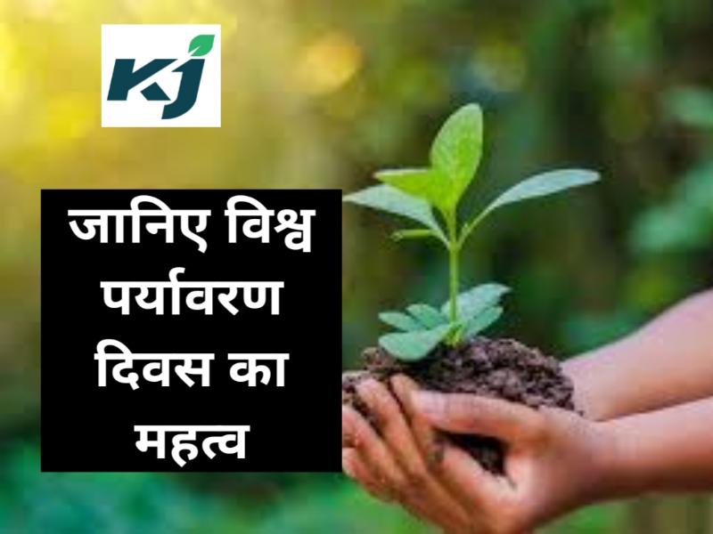 World Environment Day 2020:  प्रकृति के बिना हमारा जीवन है असंभव, जानिए विश्व पर्यावरण दिवस मनाने का उद्देश्य