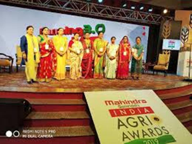 anima award