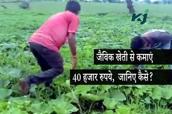 जैविक खेती बनी मुनाफ़े का कारोबार, किसान ने 1 हजार रुपए की लागत से कमाएं 40 हजार