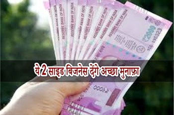 बिना पूंजी में आसानी से शुरू होंगे ये 2 साइड बिजनेस, कमाएं हर महीने हजारों रुपए