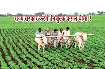 राज्य सरकार करेगी किसानों की फसलों का निशुल्क फसल बीमा