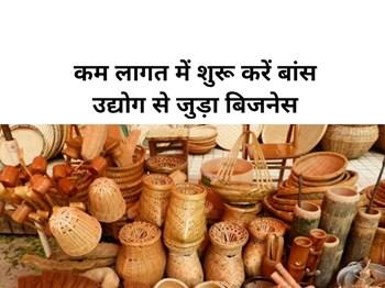 Best Profitable Business:  कम लागत में शुरू करें बांस उद्योग से जुड़ा Business, मोदी सरकार देगी लोन !