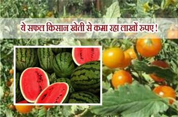 टमाटर और तरबूज की खेती से यह किसान कमा रहा लाखों रुपए, जानिए क्या है पूरी तकनीक