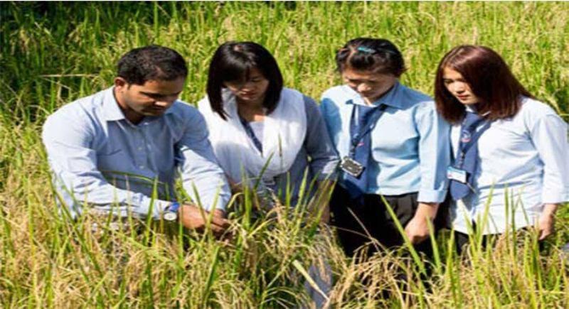 कृषि डिप्लोमा कोर्स