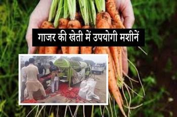 कृषि यंत्रों से गाजर की बुवाई और धुलाई करना है बेहद आसान, समय औऱ लागत की होगी बचत