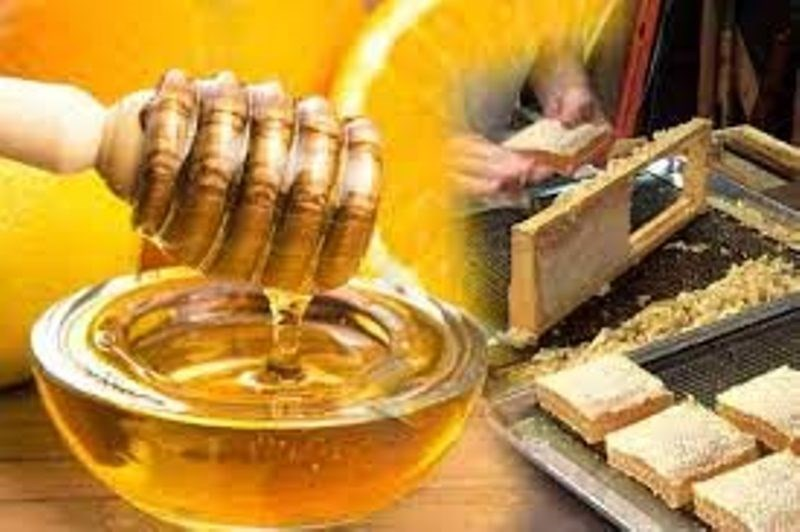 Honey Business