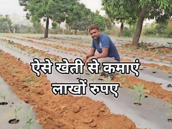 मल्टीनेशनल कंपनी की नौकरी छोड़कर खेती से कमाएं लाखों रुपए, जानें इस सफल किसान की कहानी