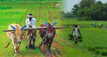 कृषि यंत्रीकरण के लिए केंद्र सरकार से मिला 100 करोड़ रुपये- कृषि मंत्री