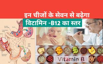 Vitamin B-12 Foods:  इन चीजों  के सेवन से होगा Vitamin B-12 की कमी  दूर, डाइट में करें शामिल