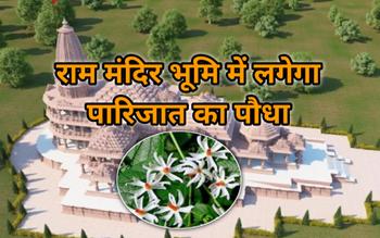 Ram Mandir Bhumi Pujan के दौरान लगा परिजात का पौध, जानिए क्या है इसका महत्व