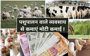 खेती के साथ शुरू करें ज्यादा कमाई वाले ये 6 व्यवसाय, होगा लाखों रुपए का मुनाफ़ा !
