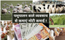 Animal Husbandry Business: खेती के साथ शुरू करें ज्यादा कमाई वाले ये 6 व्यवसाय, होगा लाखों रुपए का मुनाफ़ा !