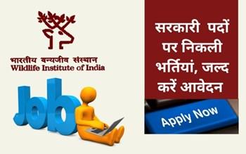 WII Recruitments 2020: ग्रेजुएट से लेकर पीएचडी वालों तक के लिए Wildlife Institute of India में निकली भर्तियां, ऐसे करें आवेदन