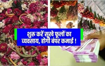 Dried Flower Business: सूखे फूल व उनसे बनी चीजों का बिजनेस देगा आपको जबरदस्त मुनाफा, ऐसे करें शुरू