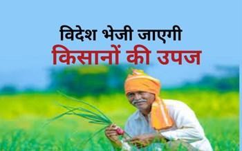 खुशखबरी: किसानों द्वारा उगाई गई हरी सब्जियां विदेशों में मचाएगी धूम, 3 गुना तक बढ़ेगी आय !