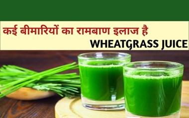 Wheatgrass Juice से होने वाले Benefits और बनाने की विधि