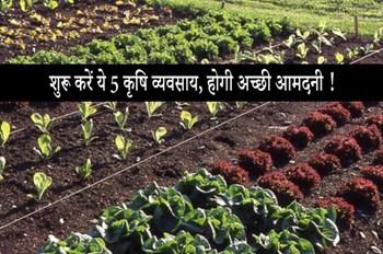 इन Small Agriculture Business को कम निवेश  में शुरू कर कमाएं भारी मुनाफा !