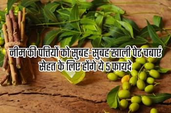 नीम की पत्तियों को सुबह-सुबह खाली पेट चबाएं, सेहत के लिए होंगे ये 5 फायदे