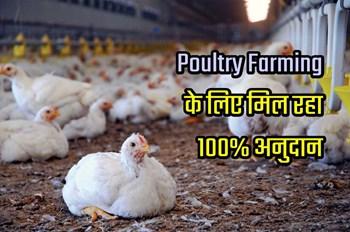 Poultry Farming  के लिए महिला किसानों को 100% सब्सिडी दे रही है राज्य सरकार, पढ़ें पूरी खबर !
