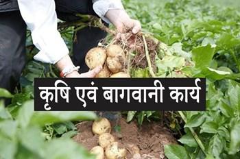 अक्टूबर माह के कृषि एवं बागवानी कार्य