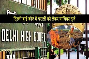 दिल्ली हाई कोर्ट में पराली न जलाए जाने की याचिका दर्ज, तत्काल कार्रवाई करने की मांग