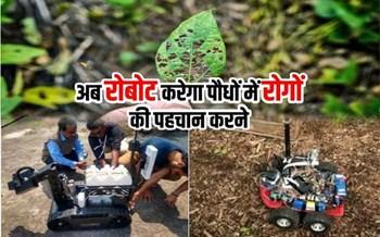 पौधों में रोगों की पहचान करेगा ये रोबोट, जानें इसकी खासियत