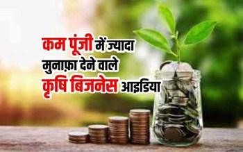 Most profitable Agriculture Business Ideas: कम पूंजी निवेश वाले 20 कृषि बिजनेस आईडिया, जो हर महीने देंगे लाखों रुपए की कमाई