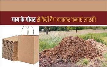 गाय के गोबर से कैरी बैग बनाकर कमाएं लाखों, जानिए लागत