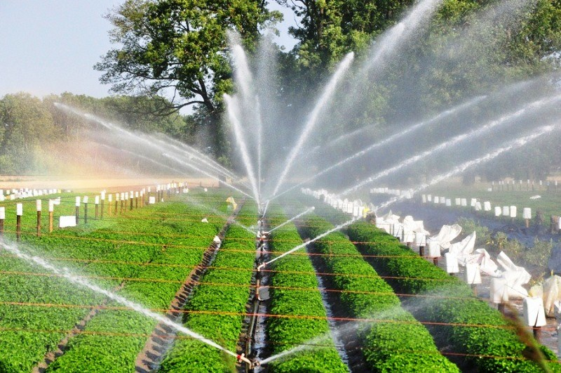 Equipment for Irrigation