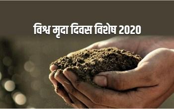 क्यों आवश्यक है मिट्टी का संरक्षण, पढ़िए भारत की मिट्टियों के प्रकार