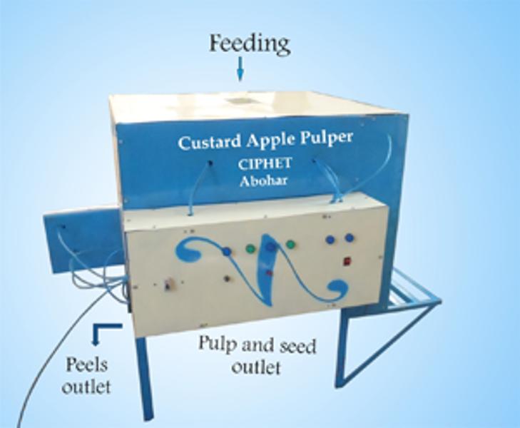 Custard apple Extractor