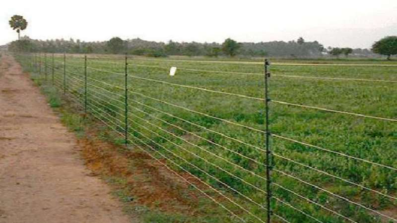 Subsidy on Fencing Scheme