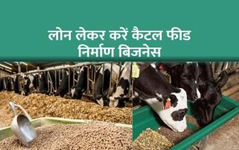 लोन लेकर शुरू करें पशु आहार बनाने का बिजनेस, हर महीने होगी 2 लाख रुपए की कमाई