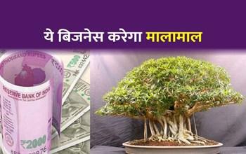 सिर्फ 20 हजार में शुरू करें ये बिजनेस, होगी 3.5 लाख रुपए तक की कमाई!