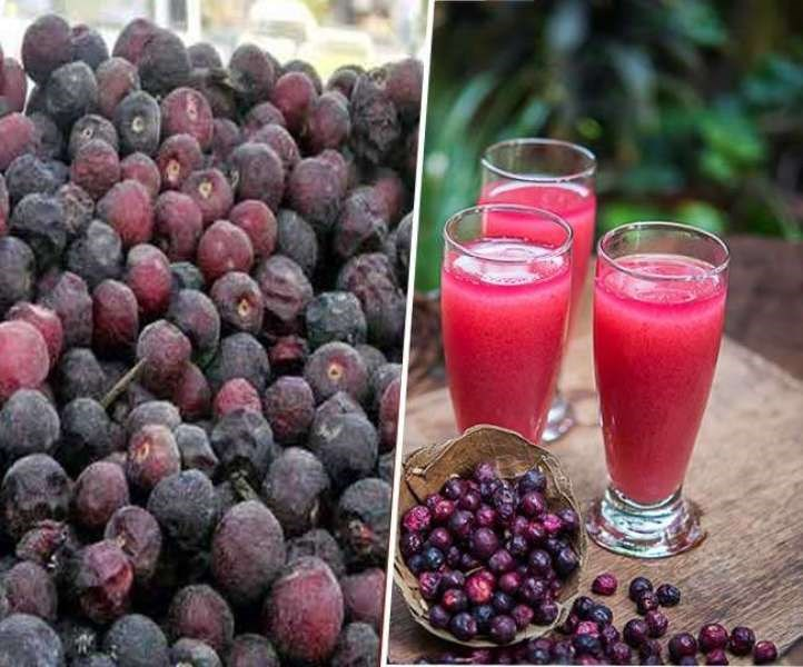 Phalsa Fruit Benefits