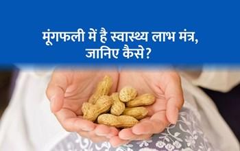 दिल के रोगियों समेत इन लोगों के लिए फायदेमंद है मूंगफली, जानिए स्वास्थ्य लाभ