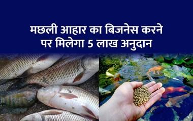 लोन लेकर करें मछली आहार का बिजनेस, हर महीने होगी 50 हजार रूपये की कमाई