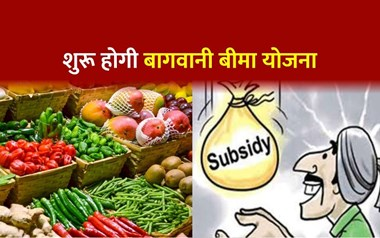 PMFBY की तर्ज पर हरियाणा में शुरू हुई बागवानी बीमा योजना, जानें किन किसानों को मिलेगा लाभ