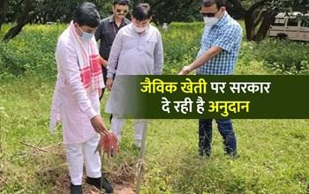 उद्यानिकी मंत्री ने दी किसानों को जैविक खेती अपनाने की सलाह, कहा- सरकार देगी अनुदान