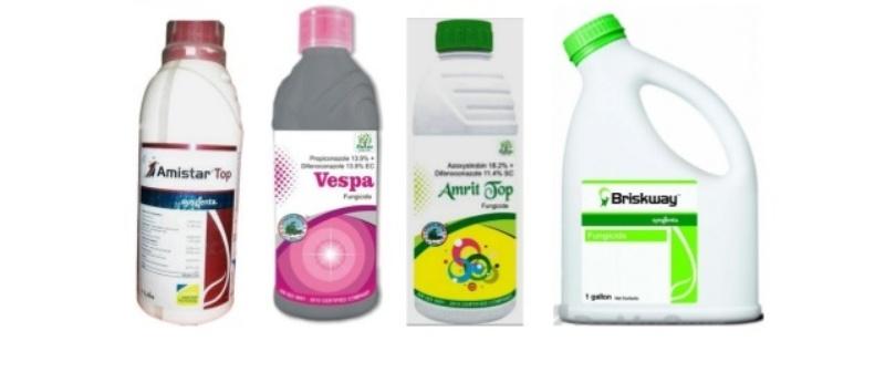 Combination Fungicides