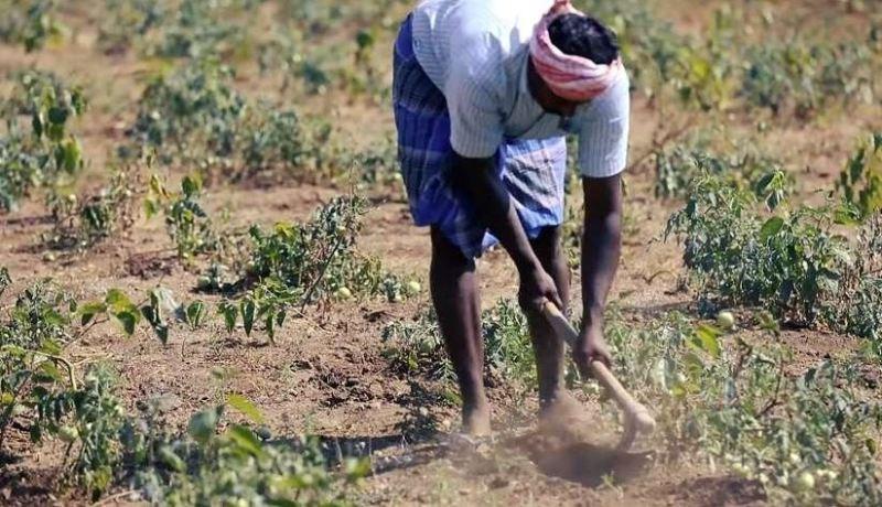 Farmers Will Do Farming