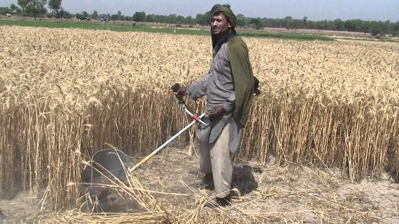 Crop Cutter Machine