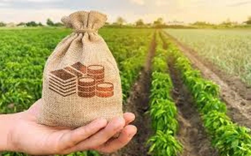 Agriculture News: Commercial production of nano urea started