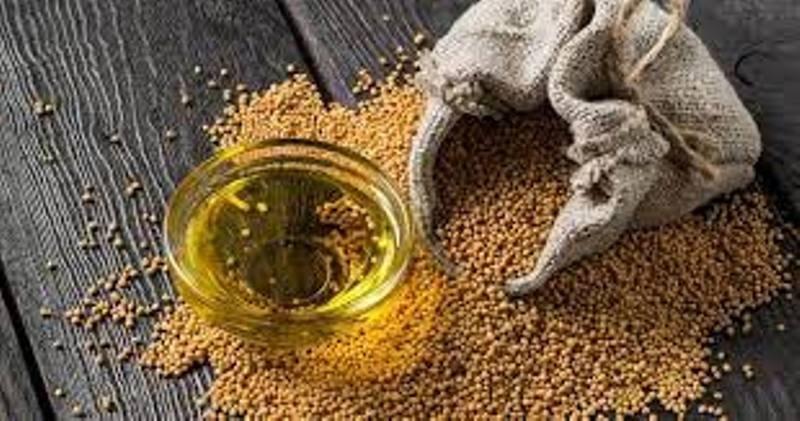 Mustard Oil Rates