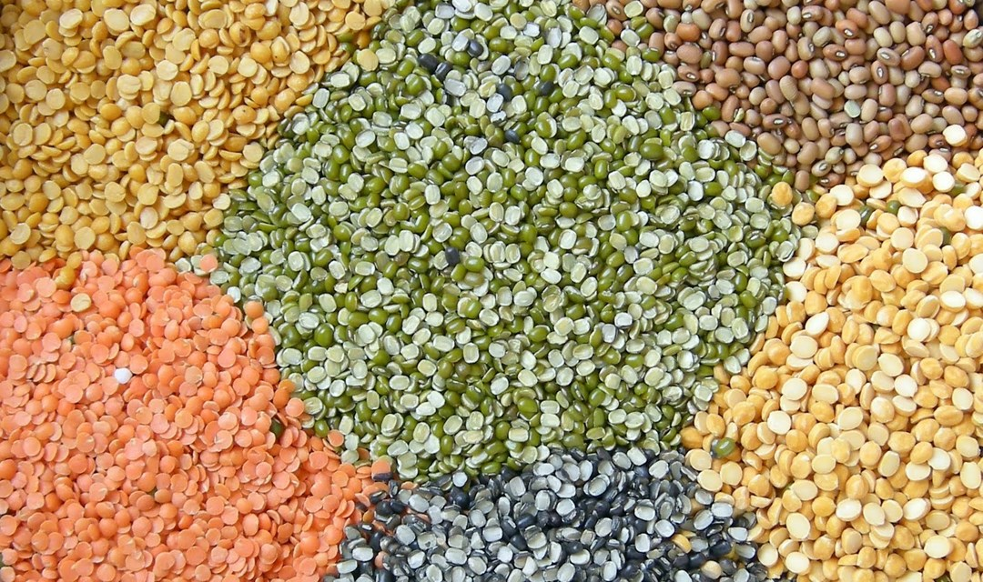 Stock limit prescribed for sellers, millers and importers of pulses