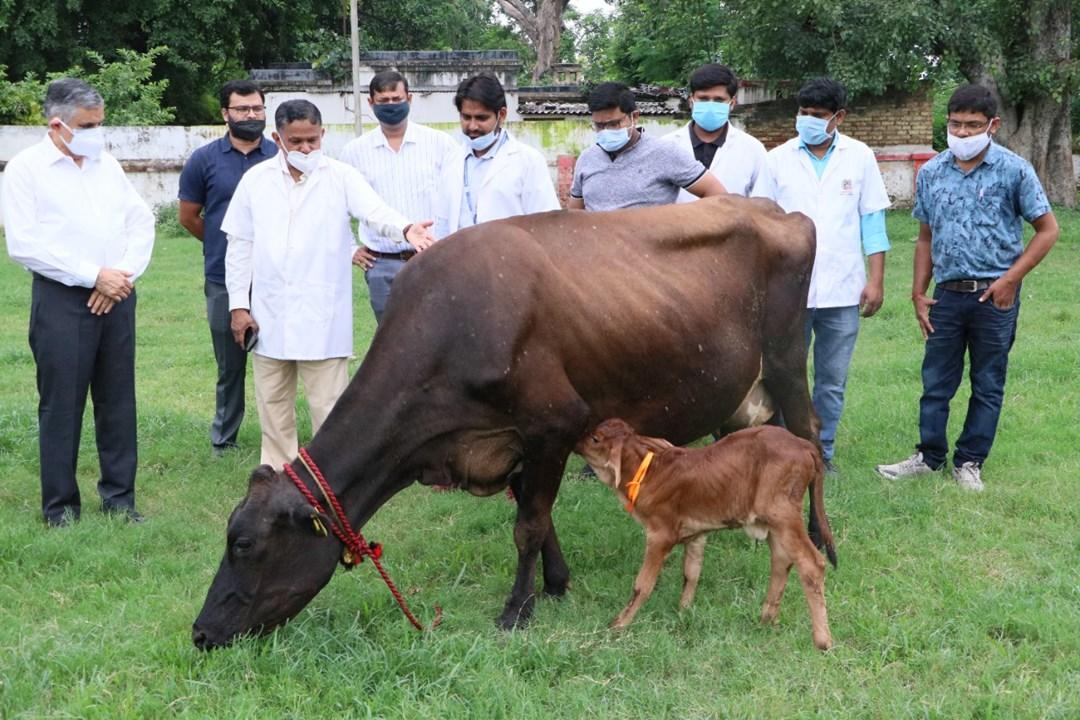 Animal University Bihar