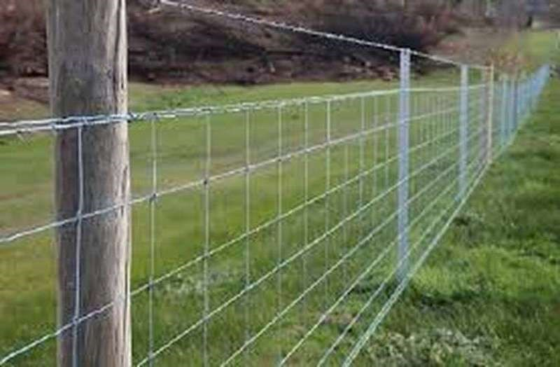Wire Fencing Subsidy