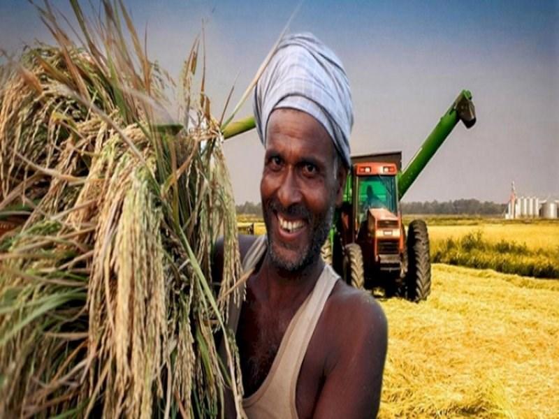 शेतकरी दुप्पट उत्पन्न